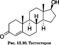 Секс и андрогены